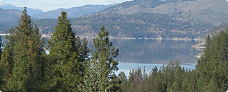 Panoramic view of lake (background) tree (foreground)